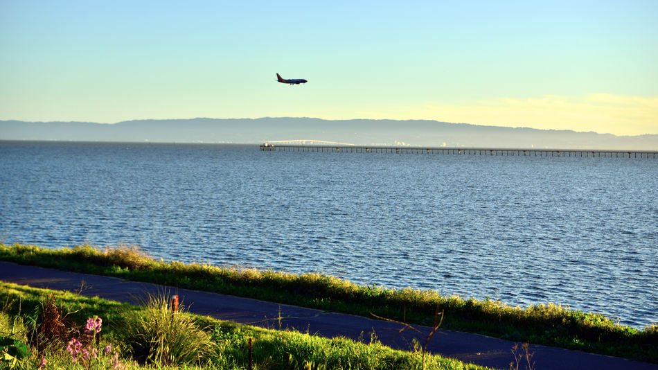 Golden Hour @ Oyster Bay Pt 1 San Leandro, Ca. Oyster Bay Regional Park Former Landfill Airplane Final Approach To Oakland Airport Last Hour Before Sunset Sundown Silhouettes San Mateo Bridge Catwalk San Francisco Bay Marin Headlands Scenic Landscape Marsh Nature Beauty In Nature Nature_collection Restored Marsh Bicycle /Pedestrian Pathway Landscape_Collection Landscape_photography