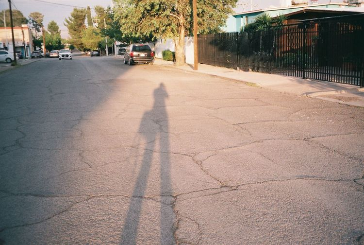 Shadow of person on footpath in city