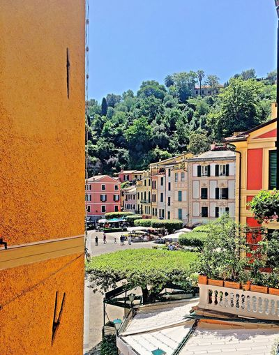 Portofino Liguria Italy Side entrance cobblestone street Hello World From Above  Small Town Pastel Colors From My Point Of View Land Building Exterior Wall No People Cobblestones Street Narrow Architecture Vertical Panorama Beautiful Horizon EyeEm Best Shots The Places I've Been Today OpenEdit Travel Destination Portofino Italy Beauty In Nature Details