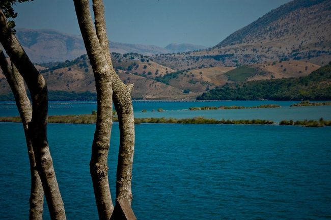 Albania Blue Butrint Calm Distant Hill Lake Lakeshore Outdoors Standing Water Tree Water Waterfront