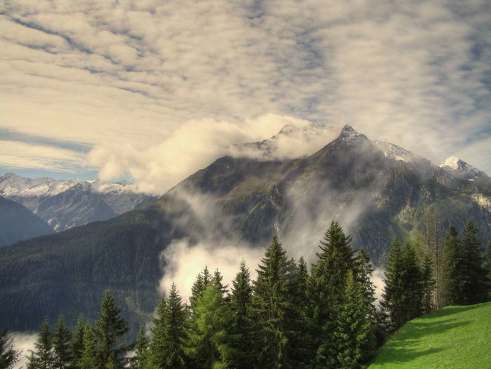 Scenic view of trees and mountains against cloudy sky during foggy weather
