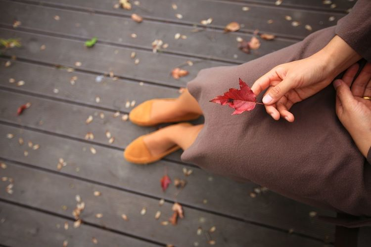 Human Hand Human Body Part Hand One Person Real People Leisure Activity Lifestyles Enjoying Life EyeEmNewHere EyeEm Nature Lover Nature Beauty In Nature Autumn Fall Outdoors People Women Plant Fashion Red Leaf Maple Leaf Positive Emotion Selective Focus Body Part Autumn Mood