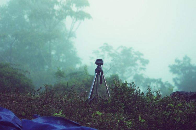 Tripod nowere EyeEm Nature Lover Mountain Fog Foggy Morning Dominican Republic Jarabacoa