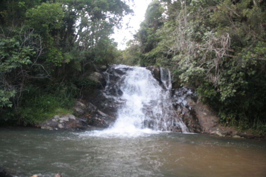Waterfall in southern Brazil Beauty In Nature Branch Brusque Day Nature No People Outdoors Santa Catarina Scenics Water Waterfall