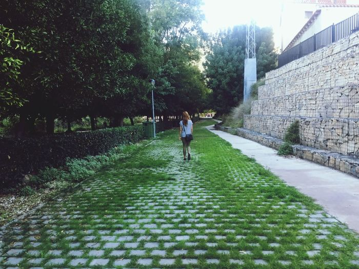 Walking The Way Forward Real People Full Length Architecture Outdoors Building Exterior Green Color One Person Day Women Tree Nature People Adult