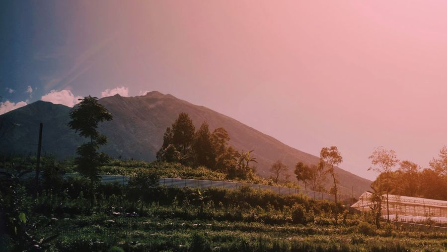 Ketep hill area
