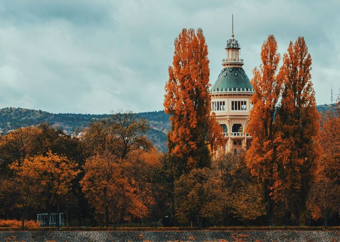 Autumn Autumn Colors Budapest Fall Colors Hungary Sightseeing Tranquility Architecture Autumn Beauty In Nature Building Exterior Built Structure Fall Margaret Island Nature No People Outdoors Scenics Tower Tranquil Scene Travel Destination Travel Destinations Tree