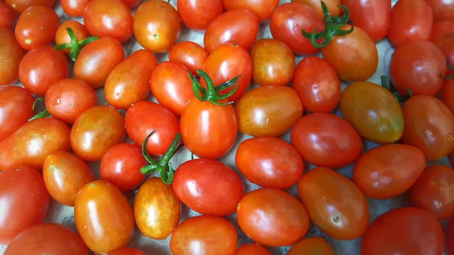 Food And Drink Freshness Food Healthy Eating Abundance Full Frame Large Group Of Objects Red Tomato Vegetable Vibrant Color Extreme Close Up Variety Outdoors Nature Summer Day Food Stories