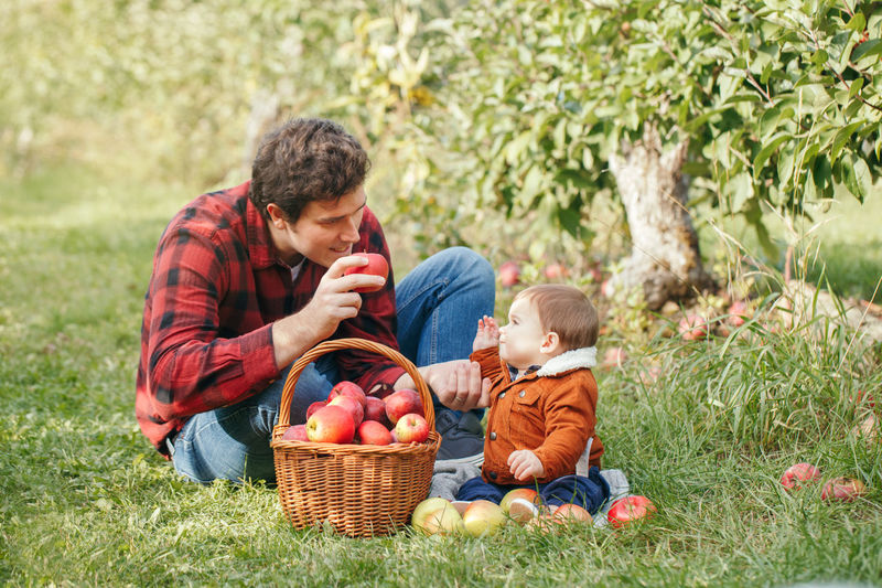 Portrait of happy father and son sitting while fruits in basket at park