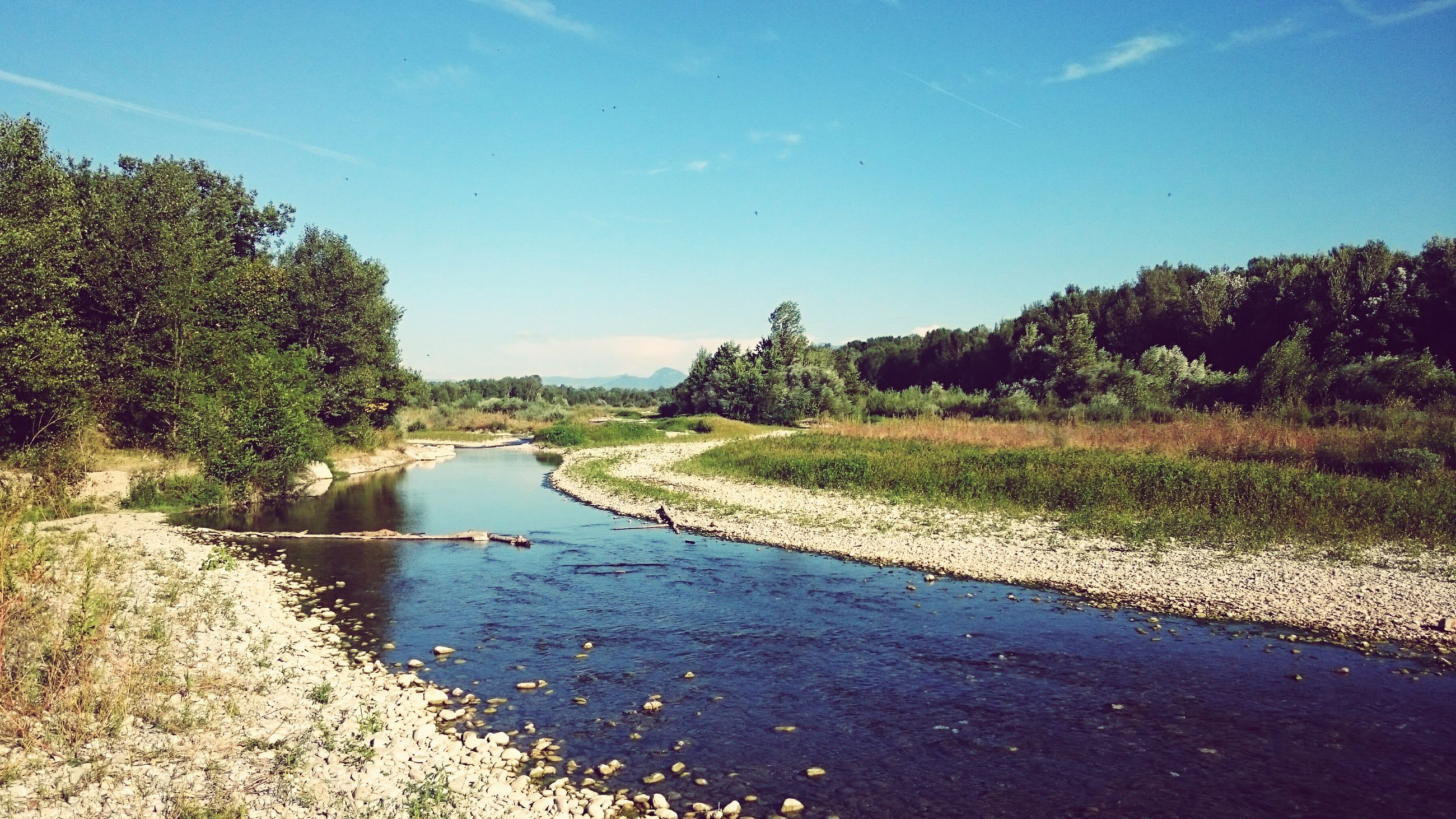 tree, water, tranquil scene, tranquility, river, scenics, canal, non-urban scene, clear sky, stream, nature, sky, day, riverbank, travel destinations, beauty in nature, flowing, growth, flowing water, outdoors, narrow, blue, summer, tourism, rural scene, long, footpath, remote, green color