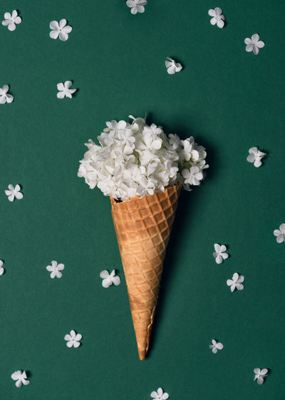 Creative still life of an ice cream waffle cone with white blossom of snowball on green background.