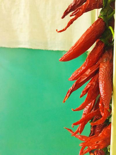Dried chili