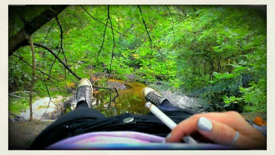 Exploring Woods Exploring Nature