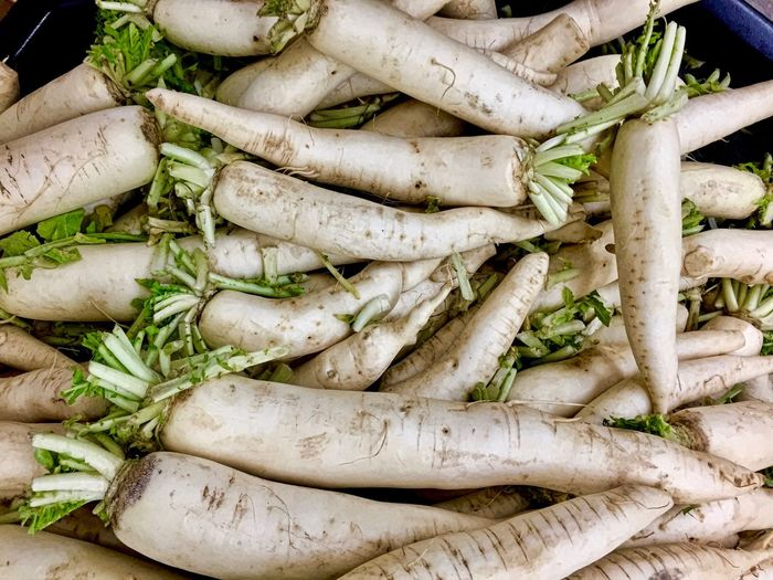 Carrot Close-up Day Dirt Food Food And Drink Freshness Green Color Healthy Eating High Angle View Indoors  Large Group Of Objects No People Organic Organic Food Parsnip Radish Raw Food Root Vegetable Still Life Vegan Vegetable Vegetarian Food Wellbeing