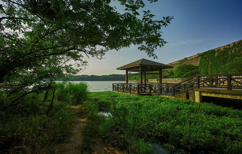 夏日湖畔 Beauty In Nature Green Color Lake Nature Sky Tree Water 前湖 南京 旅遊 棧道 鐘山風景區