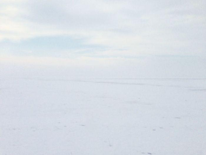it looks sooooo white !! Snow
