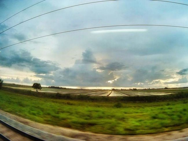 Naturelovers Sunset Nature_collection Paddy Field Nature Photography Adventure Club Nature Natureporn Railway VSCO Vscomalaysia Vscocam Vscoperak Vscokedah Showcase July Traveling Home For The Holidays