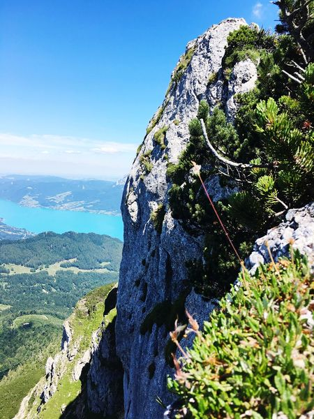 Gipfelstürmer Hiking Schafberg (Austria) Mountain Nature Plant Day Sky Tree Growth Beauty In Nature Sunlight Outdoors Water Land Scenics - Nature No People