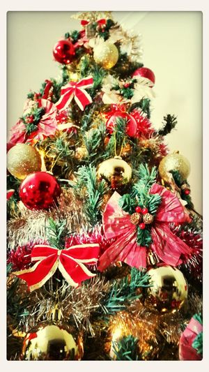 Christmas Tree Jodyvford Festive Season Christmas Decorations
