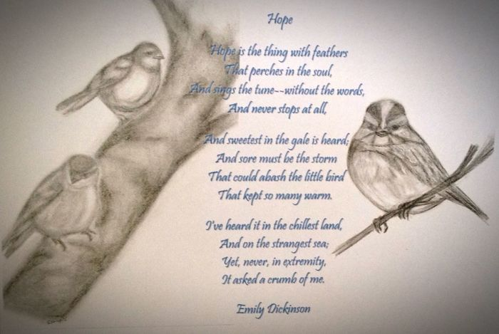 Sketch Poetry Birds Drawing Emily Dickenson My Art Relaxing