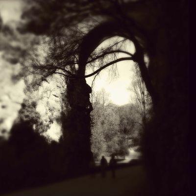 Parc Buttes Chaumont Paris NEM Memories NEM Landscapes Mobfiction