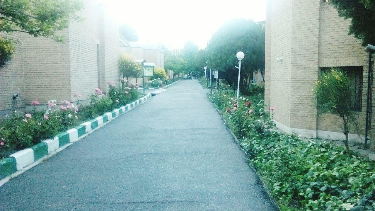 دانشگاه امام صادق(ع)