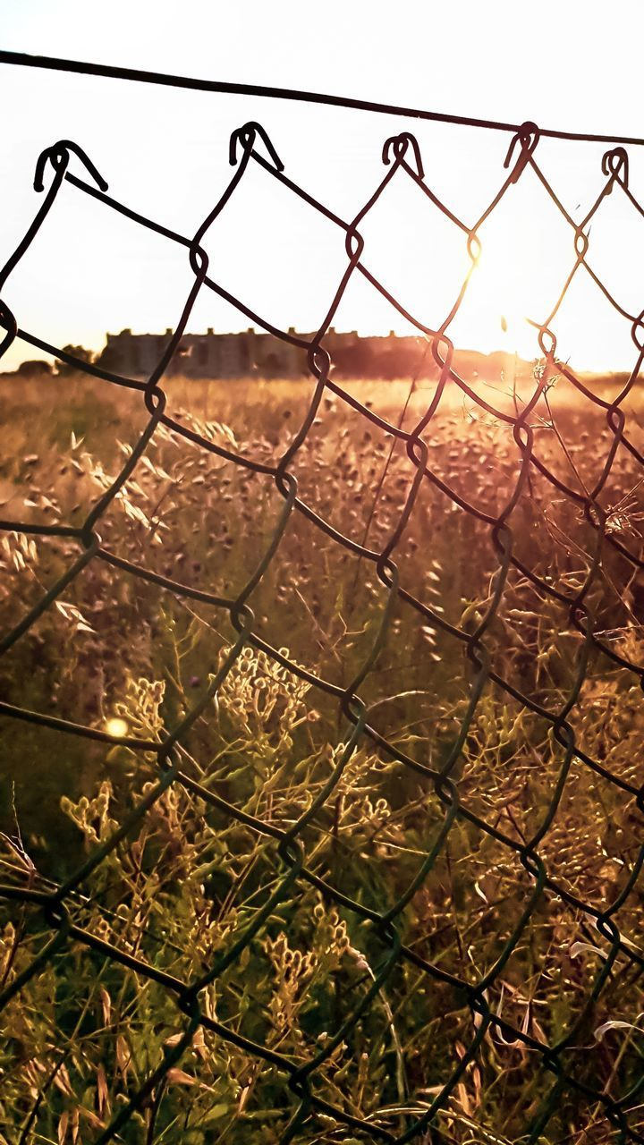 BARBED WIRE FENCE AGAINST SKY DURING SUNSET