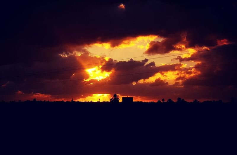 Sunset Silhouette Dramatic Sky Sky Night No People Outdoors City Power In Nature Forest Fire Nature Beauty In Nature Day Yellow Sun Travel Tourism Dramatic Sky Been There. جربة  تونس Vacations