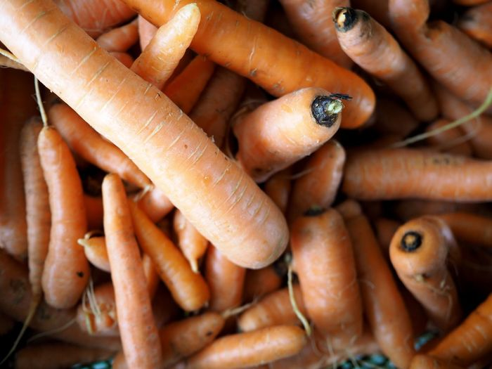 Carrots Organic Full Frame Close-up Organic Food Organic Carrots Orange Carrots