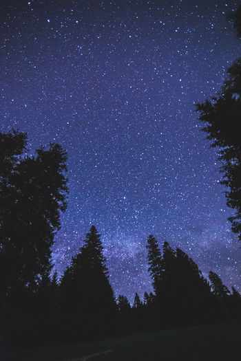 Astronomy Beauty In Nature Constellation Galaxy Low Angle View Nature Night No People Outdoors Scenics Silhouette Sky Space Space Exploration Star - Space Starry Tranquil Scene Tranquility Tree