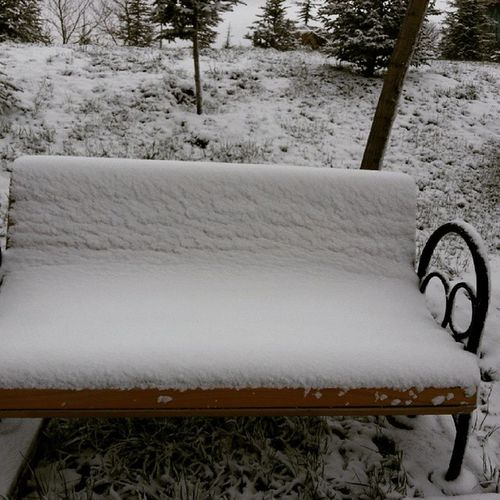 Nisan da Ankara ! @bilkentuniv @bilkentedu Bilkentuniversity Bilkent Baharsandımgeldim Spring Snow Cold Unutamadıklarım Keyif Mutluluk Heyecan Hepsibirarada Merve Iyikigelmisimyanina @merveuruktan
