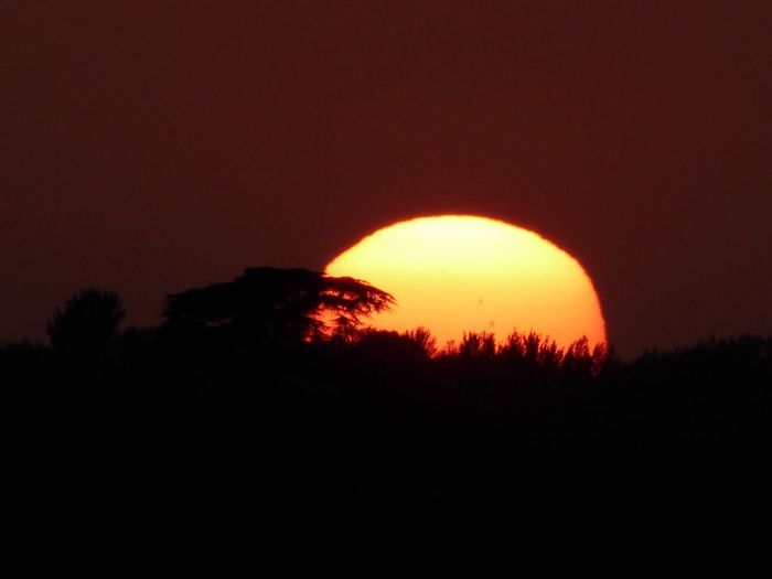 Setting Sun Setting Settingsun Sunset Sunset_collection Sunsets Sunset Silhouettes Silhouette Silhouettes Silhouette_collection Red Sunset Red Sundown Red Landscape Landscape_Collection Landscape_photography Landscapes Amazing Nature Beautiful Nature Nature Landscapes With WhiteWall