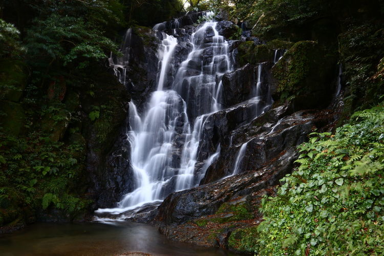 Waterfall Nature_collection Nature EyeEm Nature Lover Nature Photography