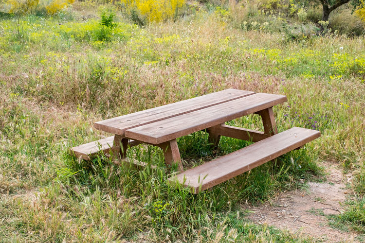 bench and wooden table in the garden Bench And Wooden Table In The Garden Bench Garden Wooden Table Grass Seat Absence Plant Empty Wood - Material Field No People Day Land Table Nature Picnic Table Park Relaxation Green Color Tranquility Landscape Park - Man Made Space Outdoors Park Bench