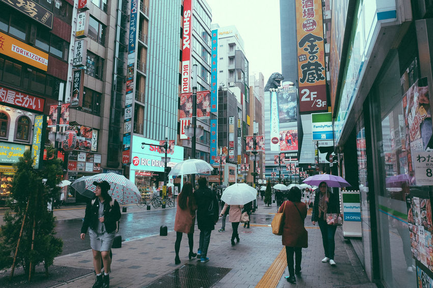Architecture Building Building Exterior Built Structure Casual Clothing City City Life City Street Day Japan Large Group Of People Leisure Activity Lifestyles Mixed Age Range Outdoors People Rain Rainy Days Shinjuku Shopping The Way Forward Tokyo Travel Destinations Umbrella Walking