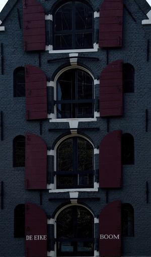 windows The