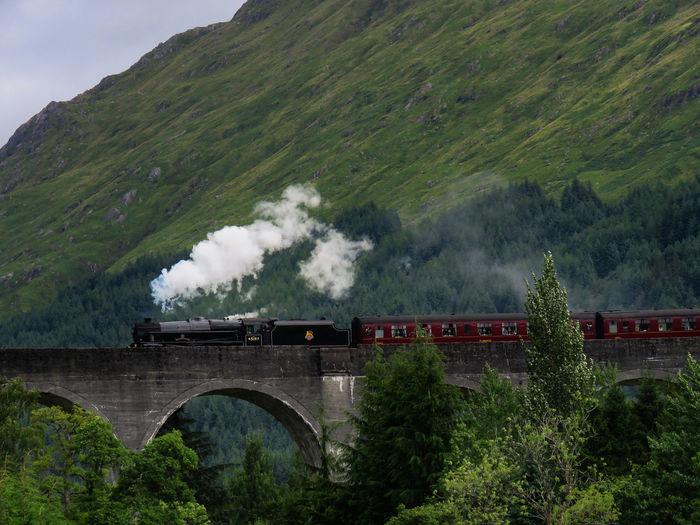Train Train - Vehicle Transportation Rail Transportation Steam Train Smoke - Physical Structure Bridge on the move Glenfinnan Zweinstein Harry Potter