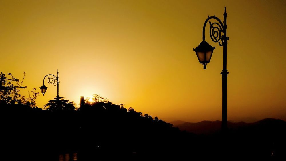 Looney lamp post Landscape Vintage Lights Morning Sun Lamppost Yellow Morning Light Sunset Tree Silhouette Sky Street Light Sunrise - Dawn