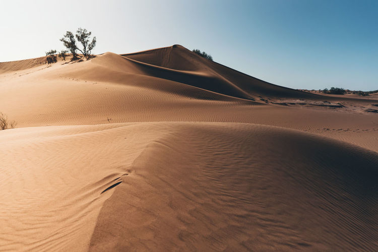 Arid Climate Atmospheric Beauty In Nature Clear Sky Climate Day Desert Environment Extreme Terrain Land Landscape Nature No People Non-urban Scene Outdoors Remote Sand Sand Dune Scenics - Nature Sky Tranquil Scene Tranquility