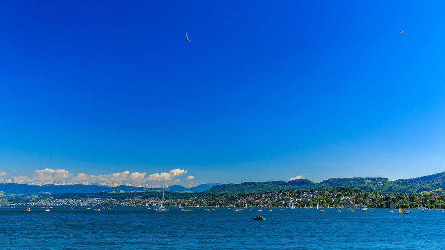 Zürichsee im Sommer Beauty In Nature Blue Day Mountain Mountain Range Nature Outdoors Scenics Sea Sky Water Waterfront