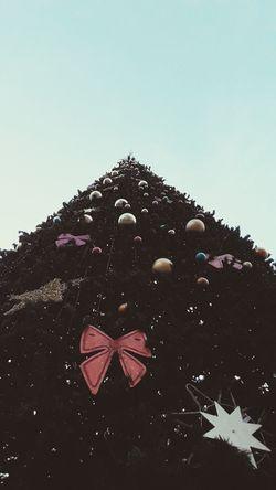 Christmas Tree Azerbaycan