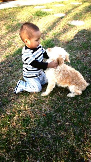 Pets Corner Bestfriends ❤ Cancer Fighting Dog Jailo And Sebastian