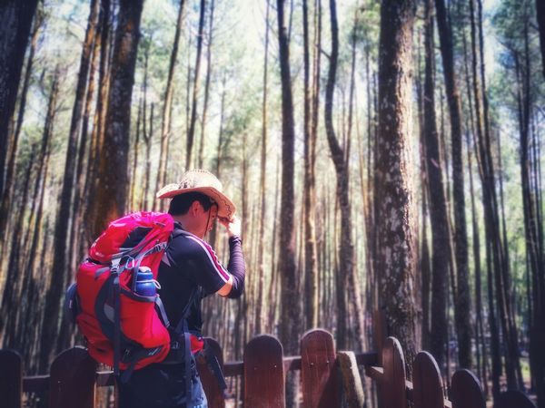 Warming up Cowboy Hat Pinetreeforest Huaweimate10pro INDONESIA Mangunan Eastjava Jawatimur Backgroundblur Day Cristeg Tree Forest Men Tree Trunk Adventure Hiker Pine Tree Backpack Evergreen Tree The Traveler - 2018 EyeEm Awards