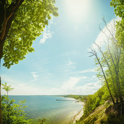 Gdynia Orlowo Cliff Beauty In Nature Branch Clouds Green Color Landscape Nature Outdoors Perspective Scenics Sea Sky Summer Sun Sunbeam Sunny Tranquil Scene Tranquility Travel Destinations Tree Tree Vacations Water