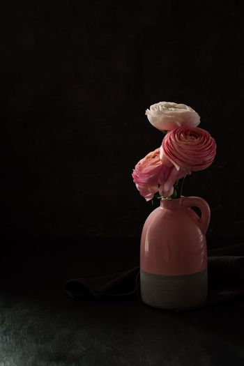 Ranunculus flowers Bouquet Ranunculus Indoors  Flower Still Life No People Flowering Plant Pink Color Plant Freshness Petal Beauty In Nature Nature Art And Craft Copy Space