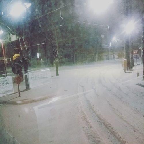 도로가 다 하얗게 뒤덮혔어 it's snowing~폭설주의보 미끄럼주의 감기조심