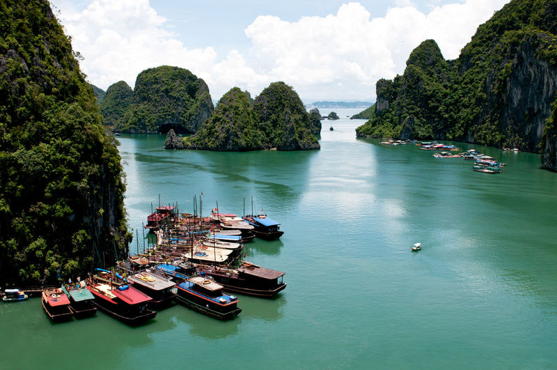 Tourist boats at the famous Halong bay in Vietnam, Asia Nautical Vessel Water Transportation Mode Of Transportation Nature Beauty In Nature Tree Scenics - Nature Sky Plant Sea Day Cloud - Sky Moored Waterfront No People Rock Tranquility Outdoors Bay Halong Bay Vietnam Halongbay Boats Coastal Landscape