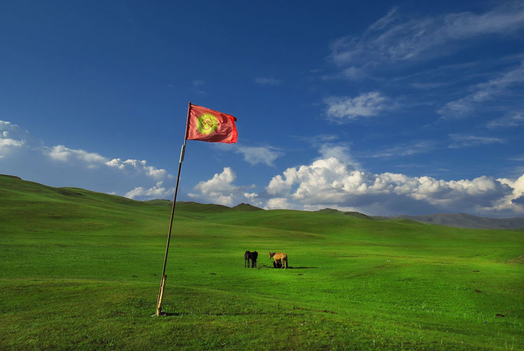Freedom Kyrgyzstan Animal Themes Beauty In Nature Cloud - Sky Cloud And Sky Day Flag Grass Green Color Horse Landscape Meadow Nature No People Outdoors Pastures Patriotism Scenics Sky Tranquil Scene Tranquility