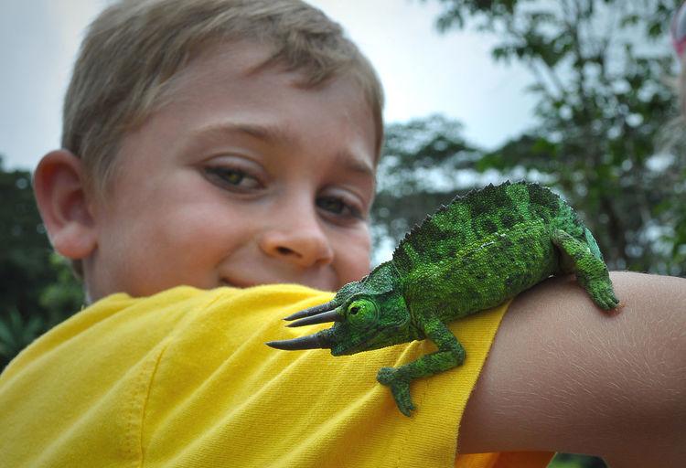 Portrait of boy with jackson chameleon on arm