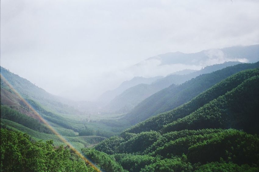 Núi rừng Tây Giang Lomo400 35mmfilmphotography Filmisnotdead Film Photography Mountain Landscape Nature Beauty In Nature Mountain Range Agriculture Fog Outdoors Sky No People